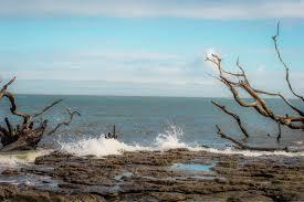 Little-Talbot-Island-State-Park